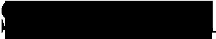sun journal logo